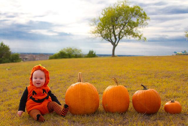 Baby Pumpkin-002