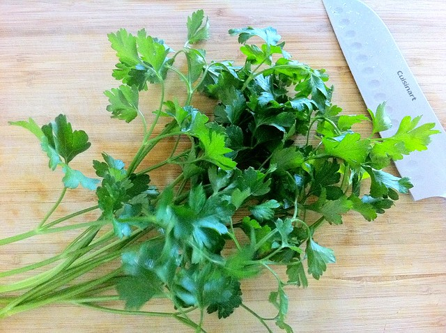 Bunch of Italian Flat Leaf Parsley