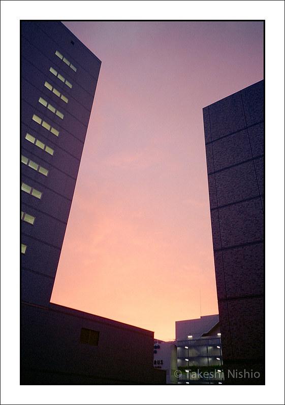 燃えるような夕焼け / Lurid Sunset