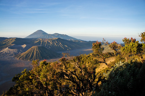 From the Bromo Viewpoint
