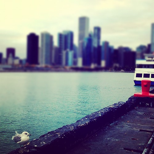 October 6: Hello Chicago!