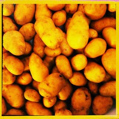 plant(0.0), fruit(0.0), crop(0.0), vegetable(1.0), potato(1.0), produce(1.0), food(1.0), root vegetable(1.0),