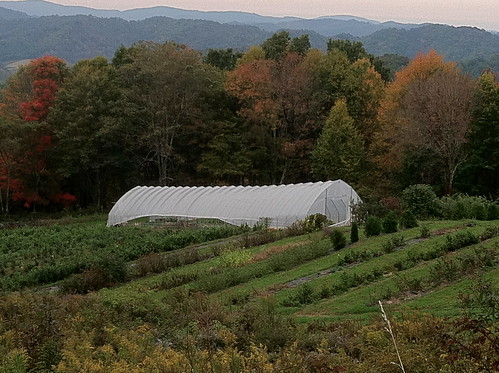 the farm 2012 by Shady Grove Gardens