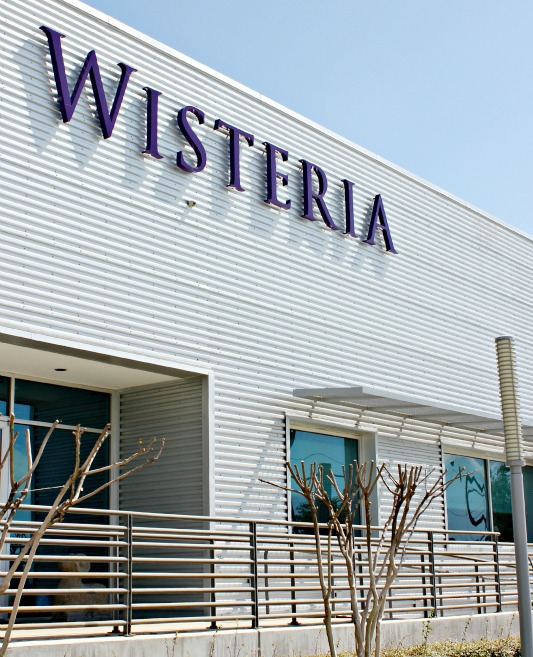 Wisteria Dallas