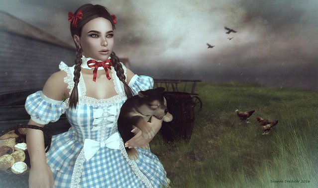 Dorothy (The Wizard of Oz) - rezology Photocontest Hair Sky 287 (Hair is not edited)