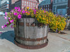 Flower Planter In South Street Seaport Area NYC by nrhodesphotos(the_eye_of_the_moment)
