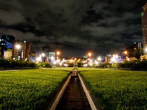 park light nature japan night garden lumix landscapes bokeh osaka nightview gf2
