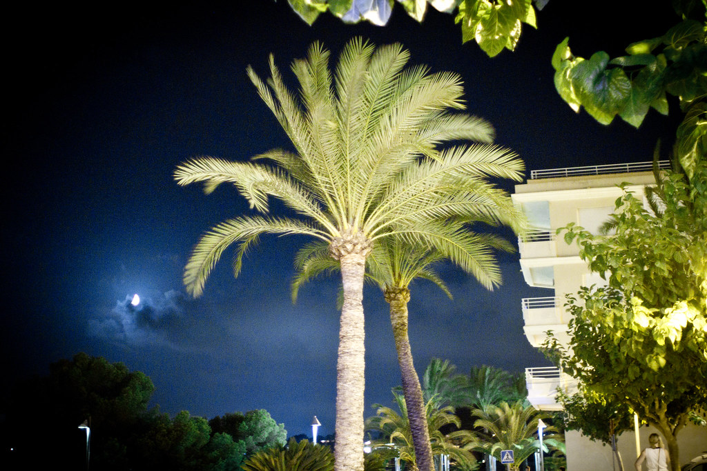 spain_summer_night_1