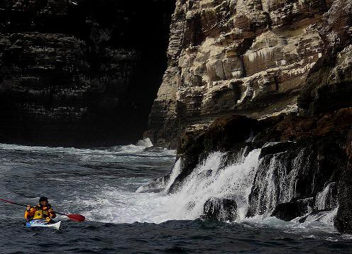 Sea kayaking in Peru with Nature Expeditions 13