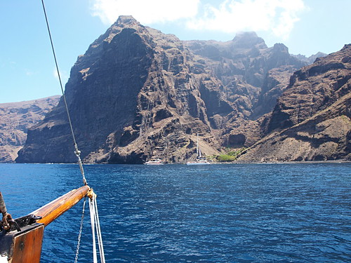 Dolphin watching, Los Gigantes