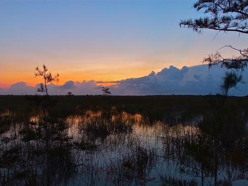 orange water silhouette sunrise nationalpark day florida miami clear everglades pahaokee