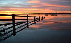 Broken Fence Sunsets