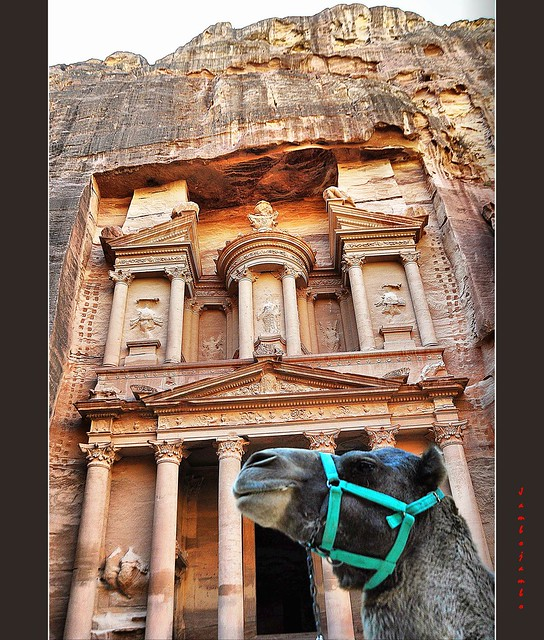 Petra - The treasure