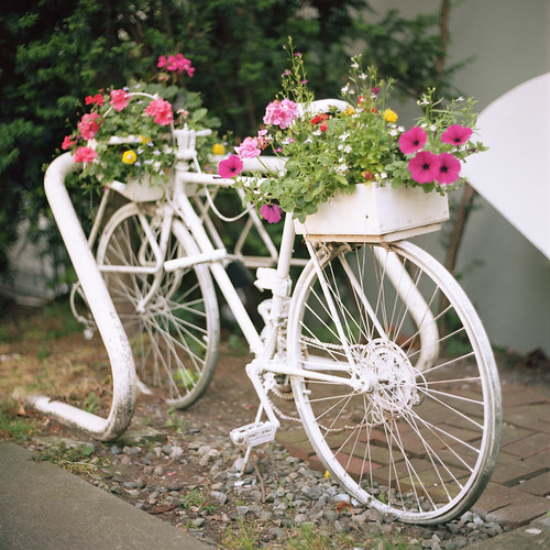 Hippie Bike Planter