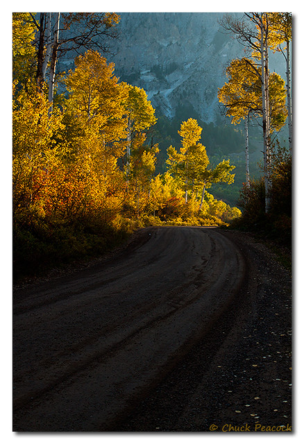 Fall Country Roads