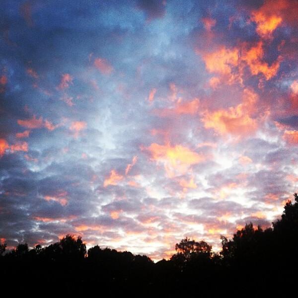 Mikko_Rasila_2012-09-27 10.09.17