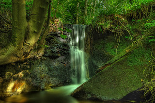 Fairlie glen waterfall