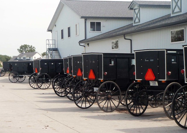 amish buggies from Flickr via Wylio