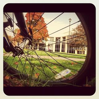 Autumn pocket cam pix
