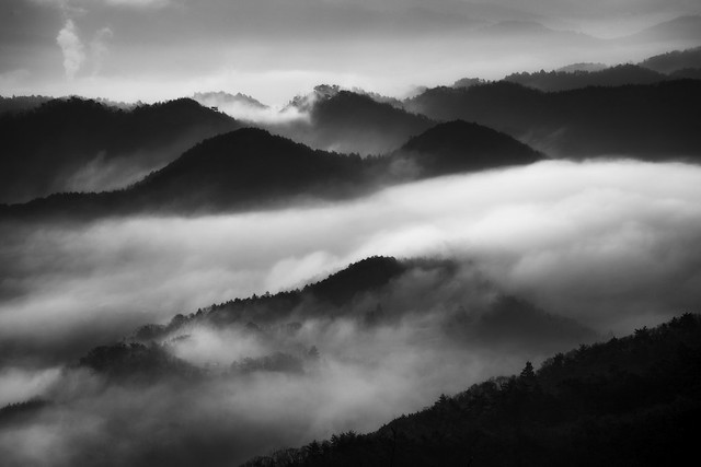 Motosu, morning fog - Feel the Music in Photography