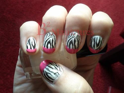 036 Zebra 52