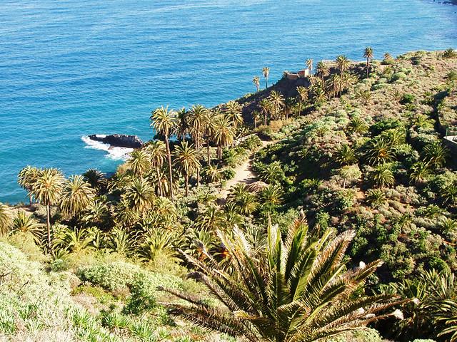 La Rambla, Tenerife