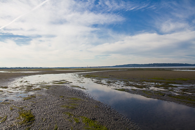 Low Tide in White Rock BC-595