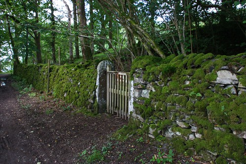 Mossy Stone fence and gate