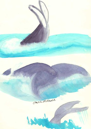 9.3.12 - Whale Watch Impressions
