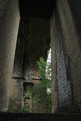 Under the Wharncliffe Viaduct