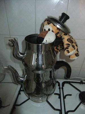 Rumli a török teafőzőben teát készít