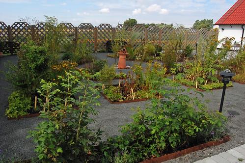 Pharmaceutical Garden