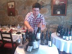 Os vinhos do Dão, por António Narciso
