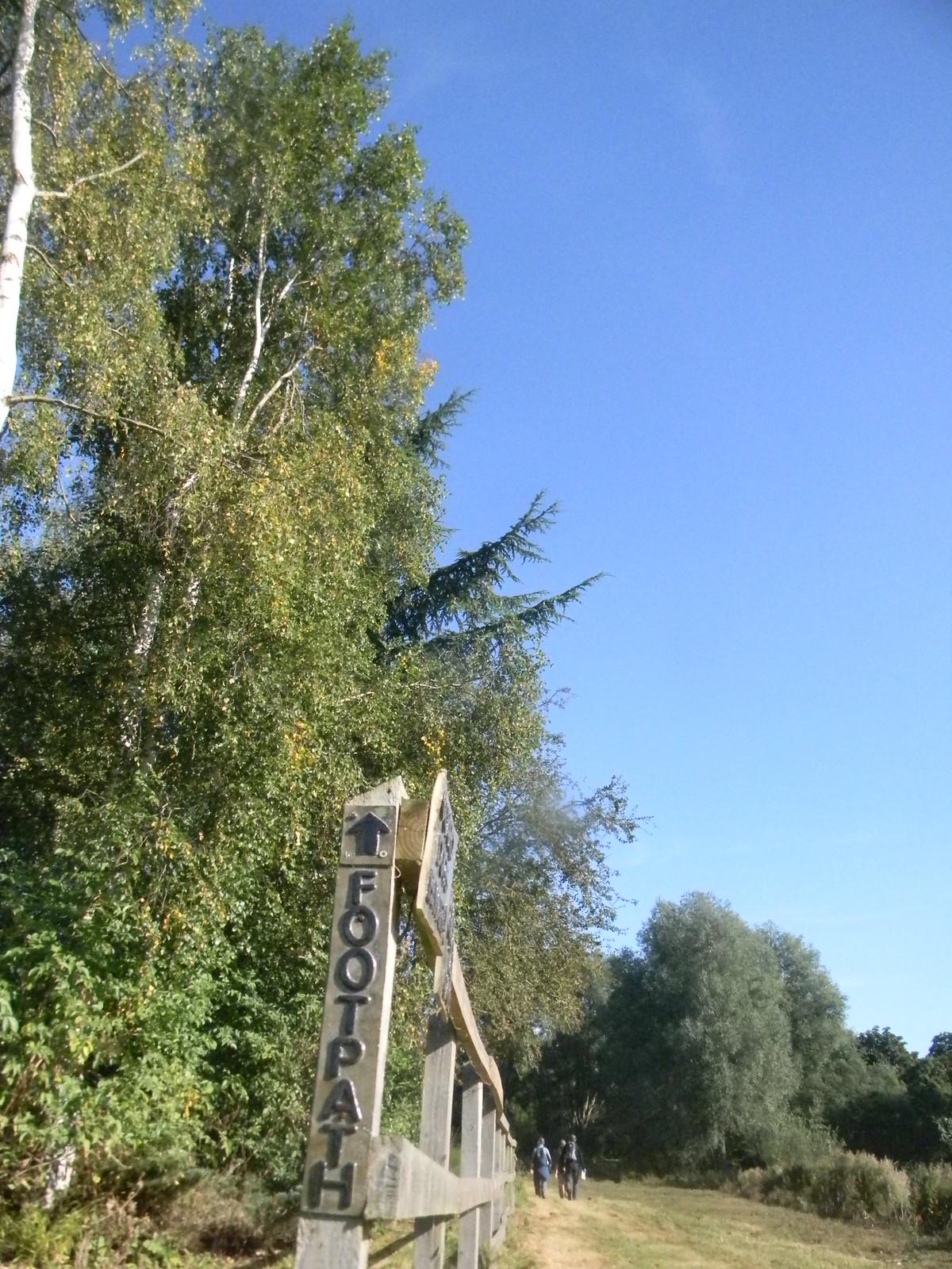 Footpath Roydon to Sawbridgeworth