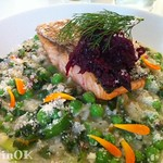 Salmon with risotto at Sage Midleton