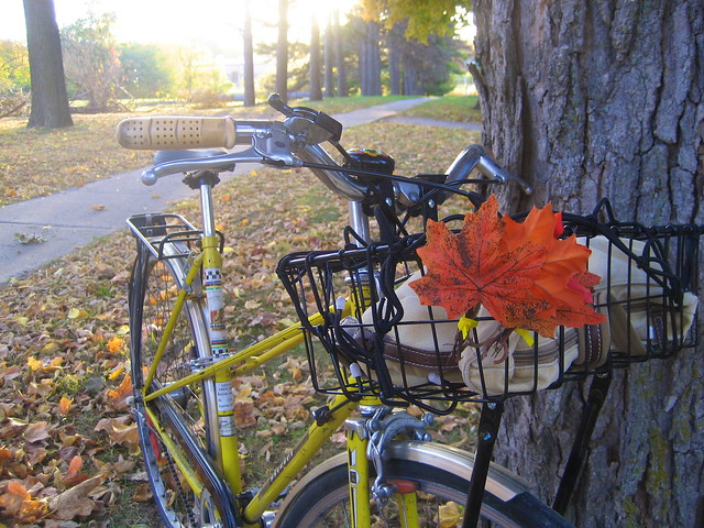 Fall Cycling