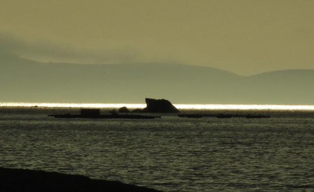 El mar iluminado
