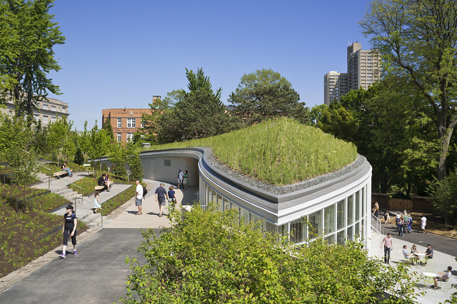The meadow-like living roof on BBG's Visitor Center is  integrated into the surrounding landscape and designed so that visitors can see it up close from several vantage points. Photo by Albert Varvecka.