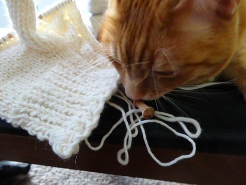 Checking out the Knitting