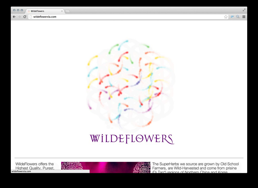 WildeFlowersLA.com Website by William Ismael | Willpower