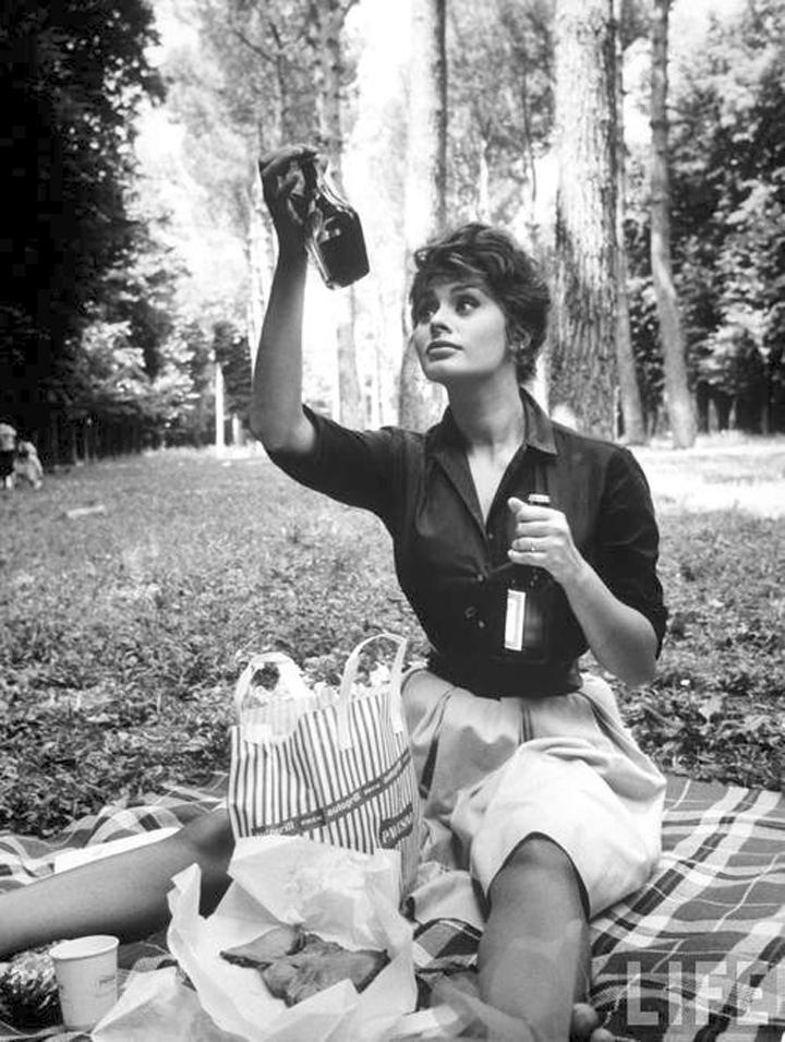 sophia picnic life