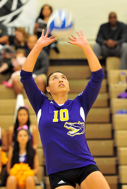 Student Iris Tolenada Leaves Lasting Impression For Gator Women 39 S Volleyball Golden Gate Xpress