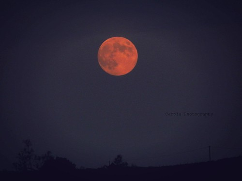 """""""Ognuno di noi è una luna: ha un lato oscuro che non mostra mai a nessun altro."""" (cit)"""