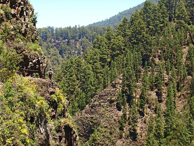 La Orotava Valley, Tenerife