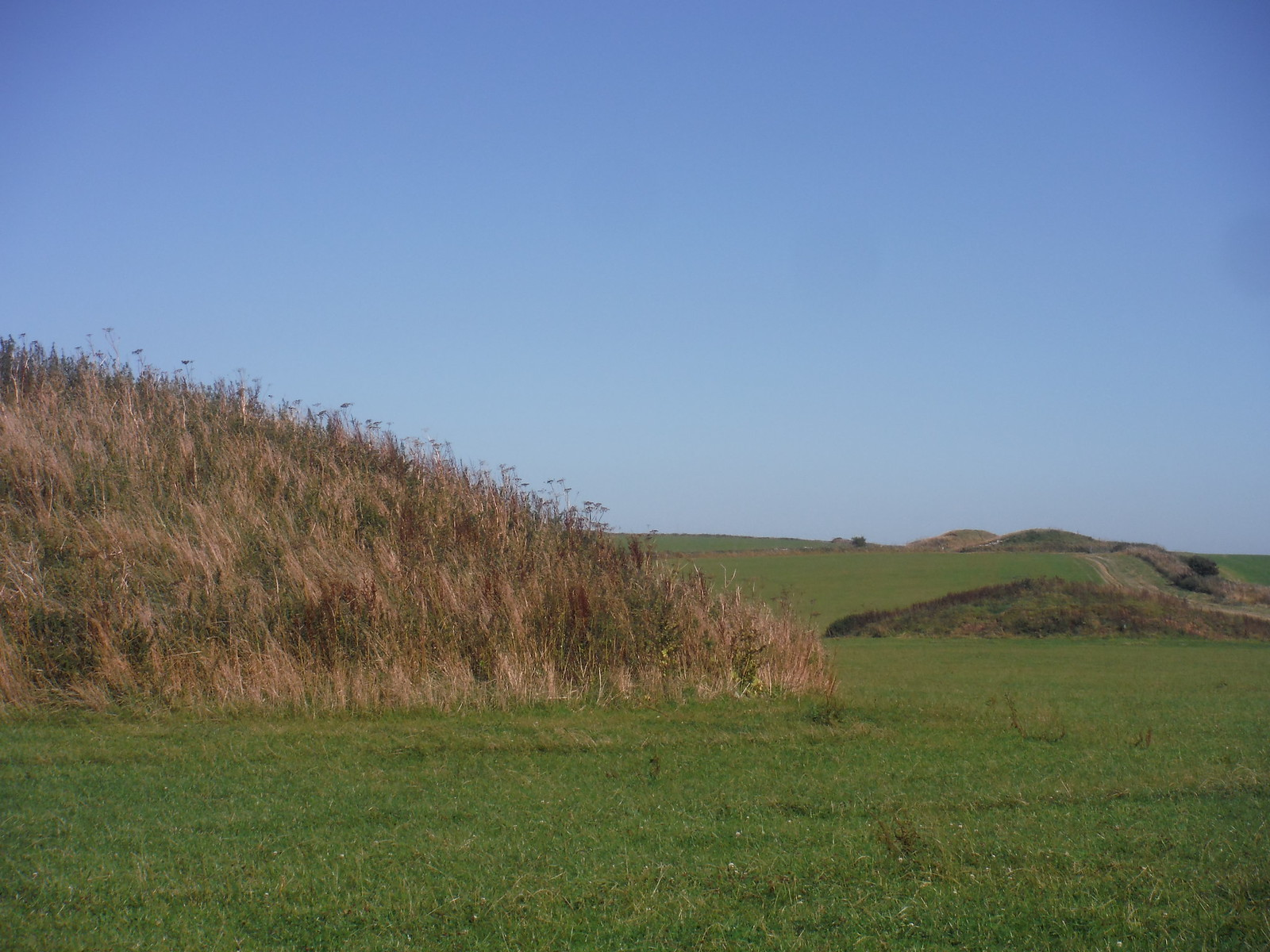 Barrows along Ridge Hill SWC Walk 275 Dorchester South Circular or to Portesham