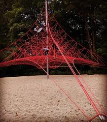 QUESTA è una rete per giocare. La voglio al Parco Briolini, grazie.