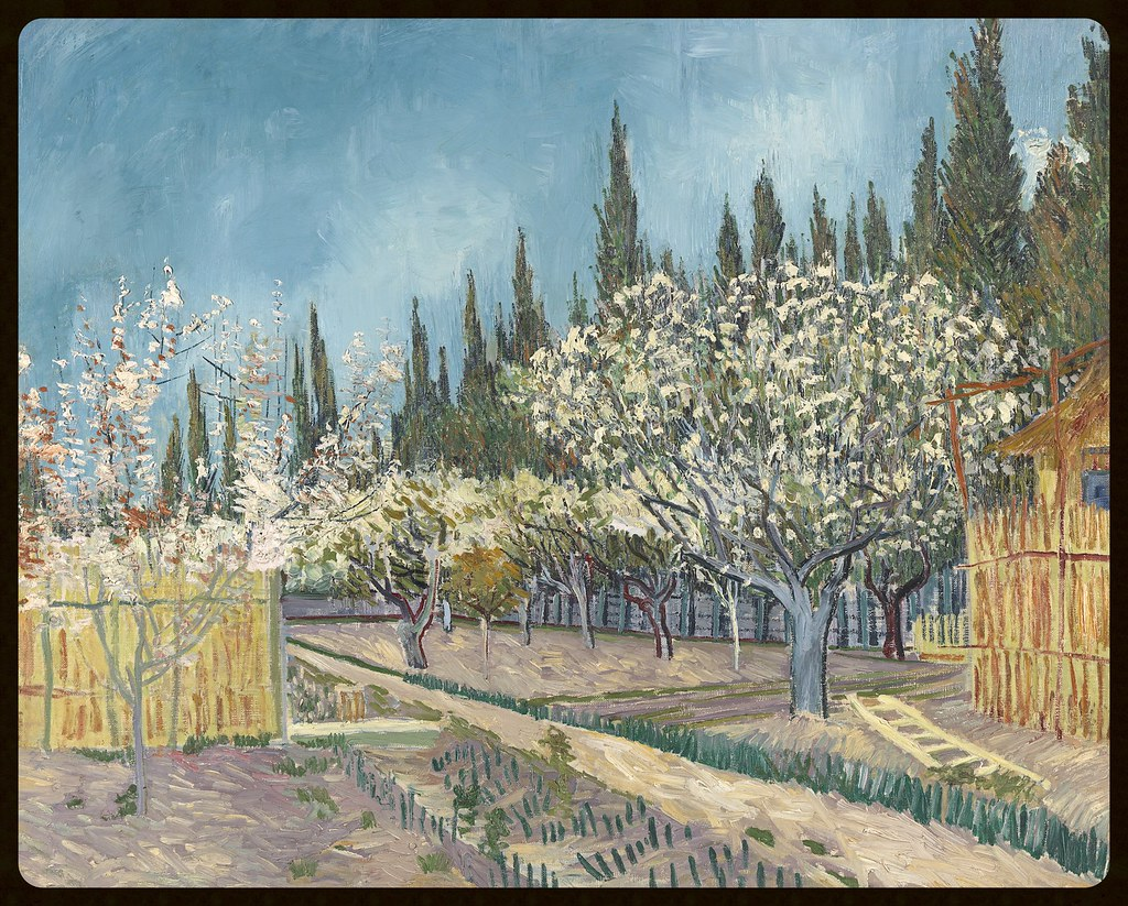 Vincent van Gogh Dutch 1853–90 Orchard in Blossom, Bordered by Cypresses 1888 oil on canvas 64.9 x 81.2 cm Kröller-Müller Museum, Otterlo © Kröller-Müller Museum