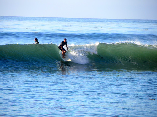 surfers in the Cove