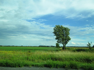 Canadian Countryside