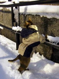 gunhee-snow6